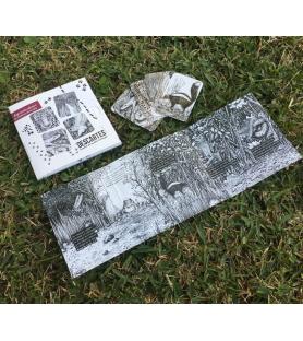 DEPREDADORES - Cuento con cartas